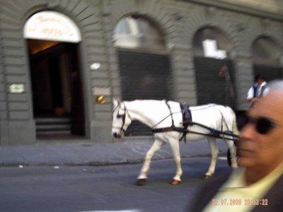 Italie: Florence et la coupole de dôme