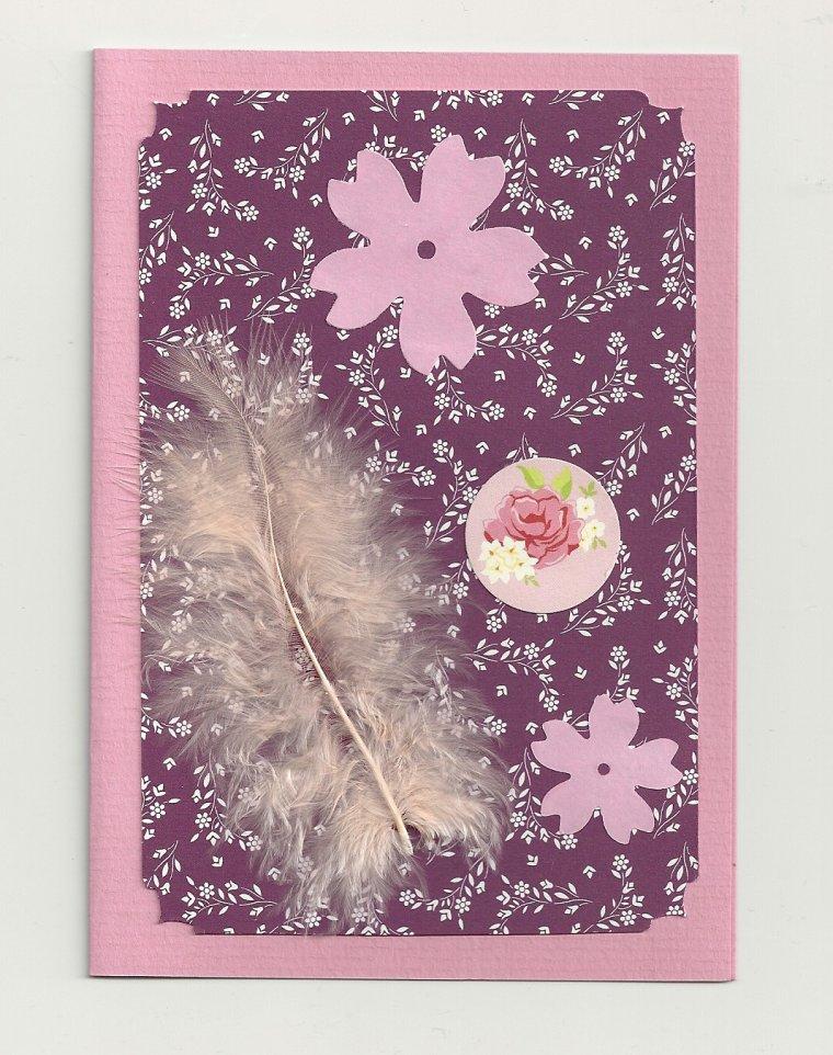 cartes plumes