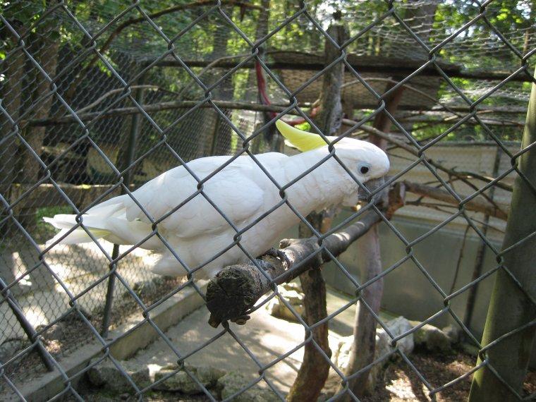 zoo de Crémines