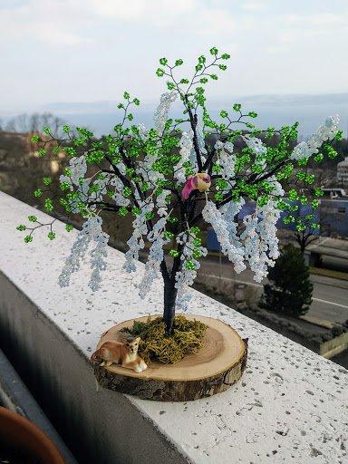 bonsai en fleurs