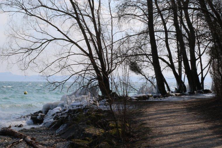 le bord du lac ces derniers jours