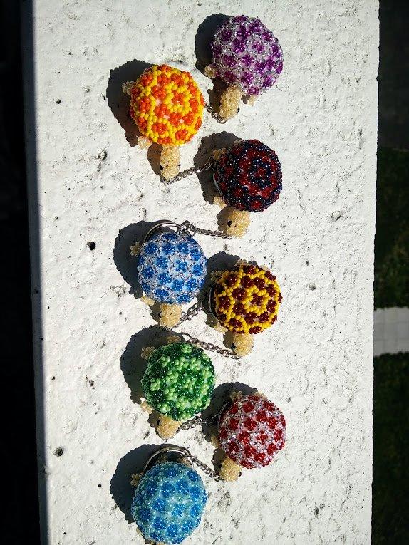 les tortues sont sorties d'hibernation