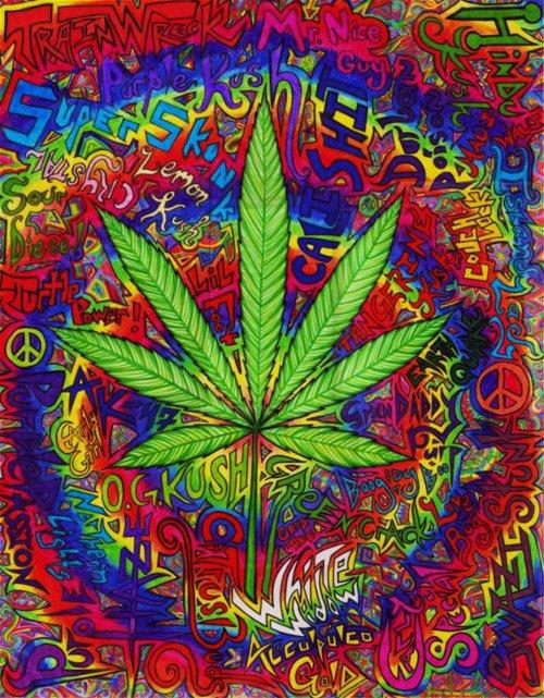 SmokeSomeWeed <3 NoXik BeatchizZ
