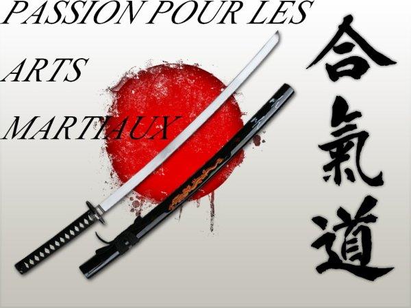 ★★★Ma Passion Pour Les Arts Martiaux★★★