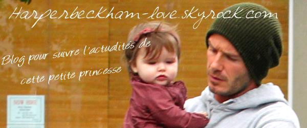 Bienvenu sur Harperbeckham-love