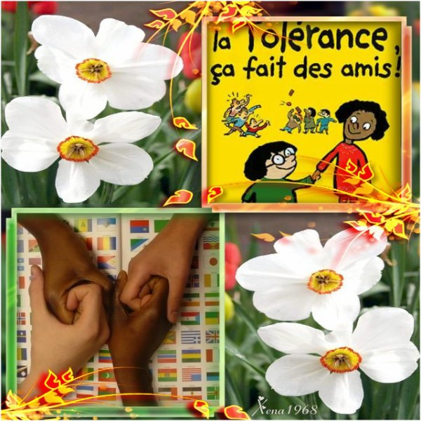 JOURNÉE  INTERNATIONALE  DE  LA  TOLÉRANCE