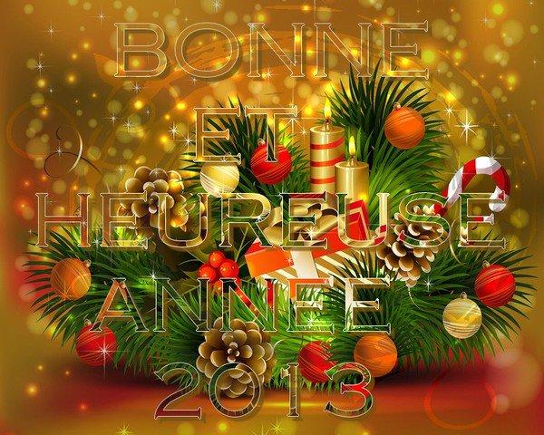 A  CHACUN  DE  VOUS  LE  MEILLEUR  POUR  2013