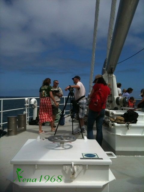 LUCY  LAWLESS  SUR  LA  FLOTTILLE  DU  NOUVEAU  RAINBOW  WARRIOR