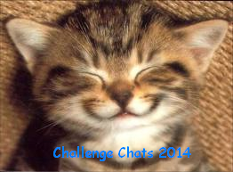 Challenge Chats 2014