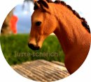 Photo de juste-schleich