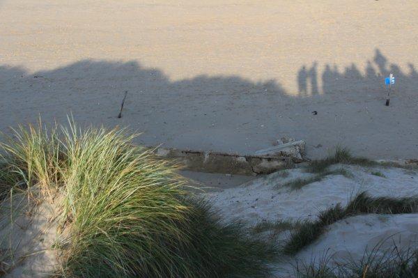 Utah Beach - 9 -