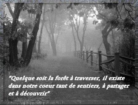 Notre coeur, cette immense forêt...