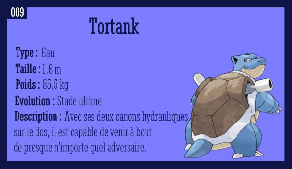 Carapuce, Carabaffe et Tortank