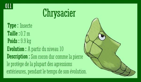 Chenipan, Chrysacier et Papilusion