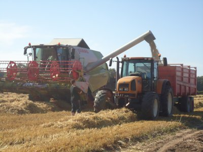moisson 2011 :moisonneuse CLAAS  tucano 430 + tracteur RENAULT ares avec remorque BRIGANT