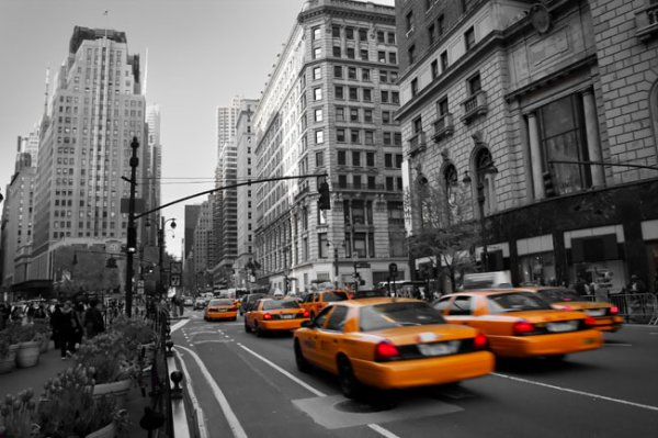 New York ♥_♥