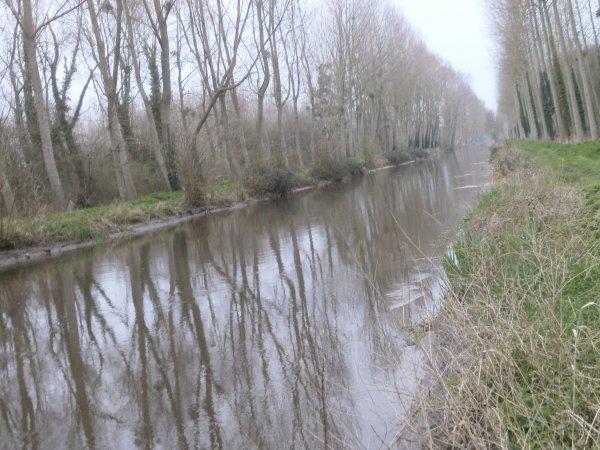 le canal de la dive en hiver 1