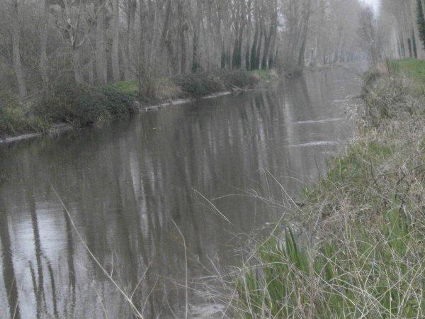 le canal de la dive en hiver 2