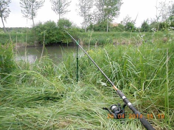 method feeder en canal