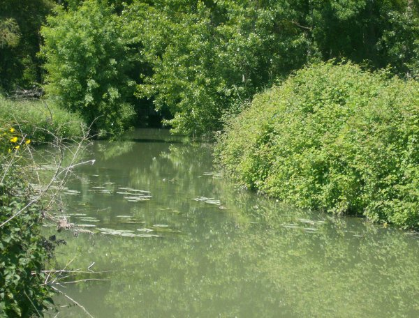 ma rivière fétiche!