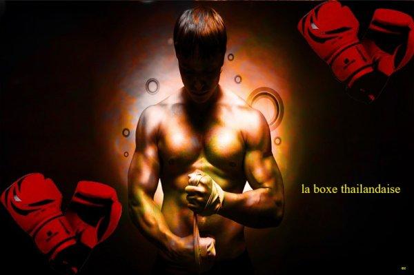 la boxe thailandaise