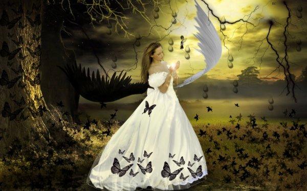 fee et ange
