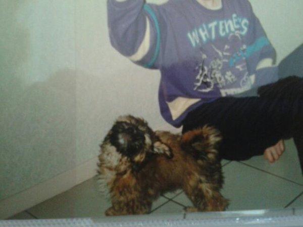 Bouba 1996/2