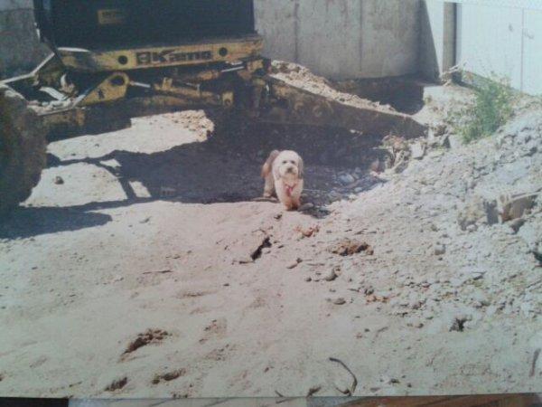 Bouba 1999