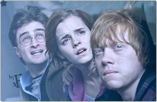 -  -  Le Trio Harry Potter 7, Partie Finale -
