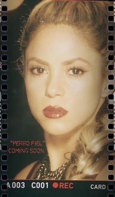"""""""Perro Fiel"""" : Shakira choisit son titre reggaeton avec Nicky Jam comme single officiel pour son nouvel album (le 06/09/2017)"""