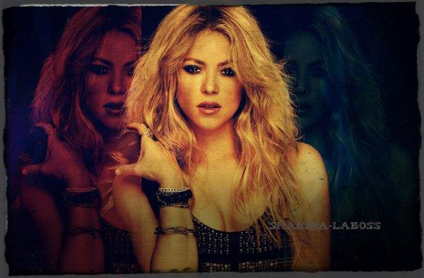 """Shakira : Travail et rigueur pour """"L'El Dorado Tour"""" (le 01/10/2017)"""
