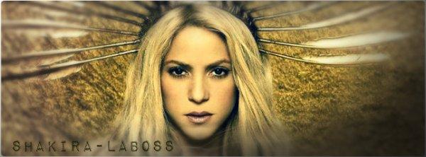 Découvrez qui sont les musiciens de Shakira ! (le 01/11/2017)