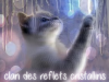 Clan des Reflets Cristallins