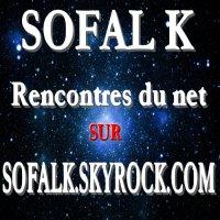 Rencontres du net - SOFALK (2008)