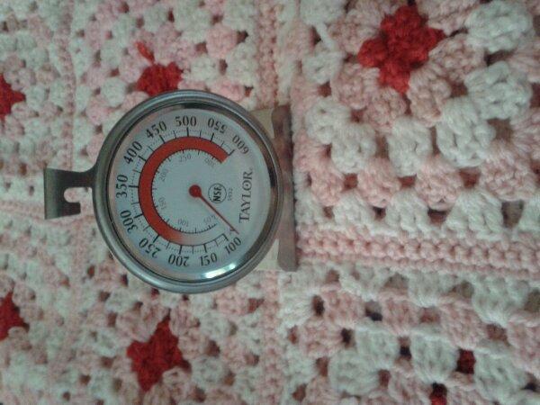 Thermometre reborning dispo