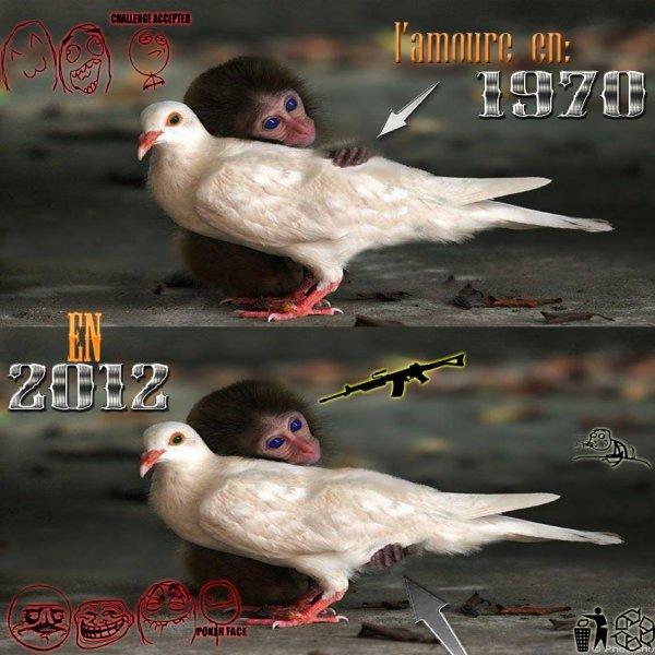 Un Singe et Un Oiseau
