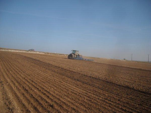 Chantier de semis