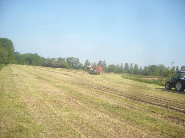 Dernier chantier d'ensilage d'herbe.