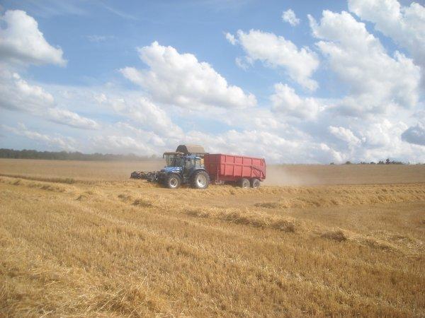 Chantier de blé.