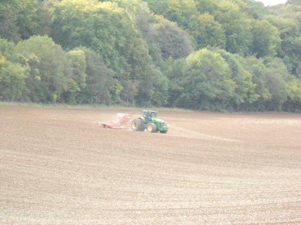 Chantier de semis de blé en 8330.