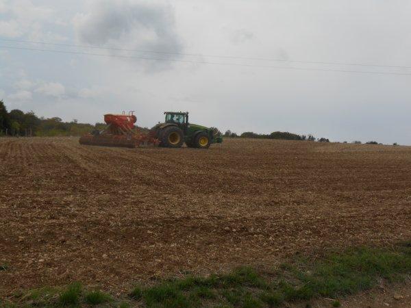 Chantier de semis de blé fin.