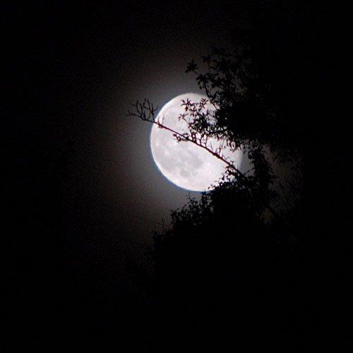 Aude à la lune