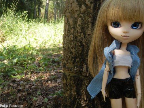 Séance...Forêt !