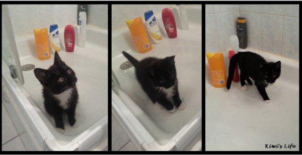 La douche : une grande histoire d'amour !