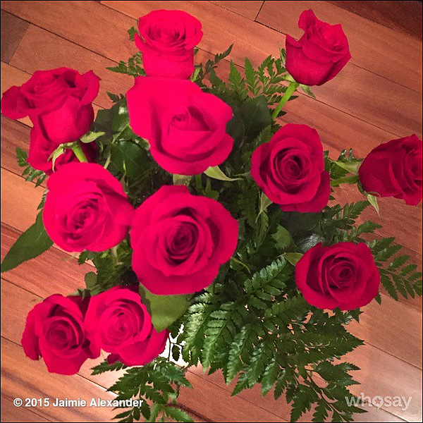 "🌹 03/03/2015 : Jaimie Alexander a poster cette photo sur son compte instagram  !     Le bouquet de rose vient de Peter Facinelli -  ""These smell soooo good, thank you @peterfacinelli #BestBoyfriendEver  #ily 🌹"""