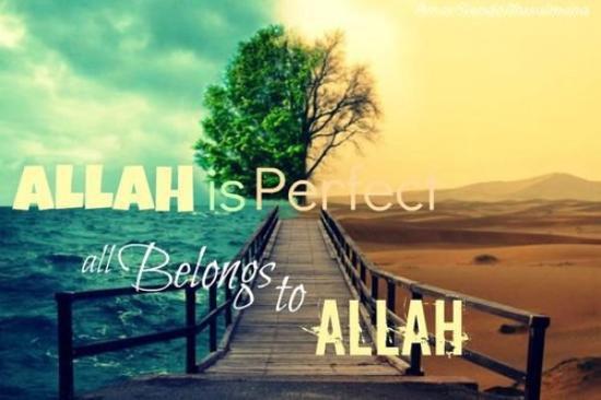 Remercie Allah pour tout ses bienfaits qu'Il t'accorde chaque jour. ❤