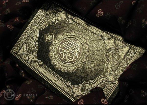Ne soyez pas ignorant, la vérité se trouve dans le Coran.. الإسلام ❤