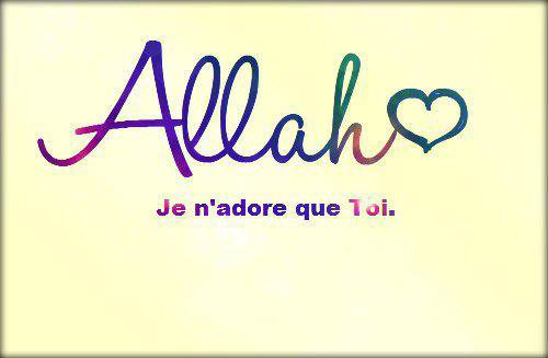 » Le message de l'Islam.. ღ