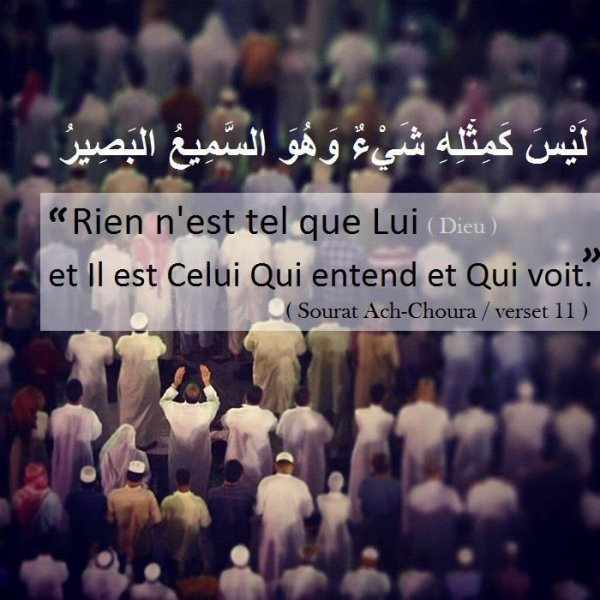 » Commєnt dєvєniʀ musulmɑn ? ❤ ( Dernier article.)