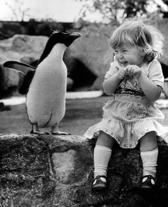 Une jeune fille qui voit un pingouin pour la première fois